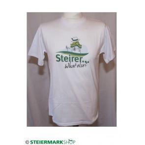 Steirer...what else?